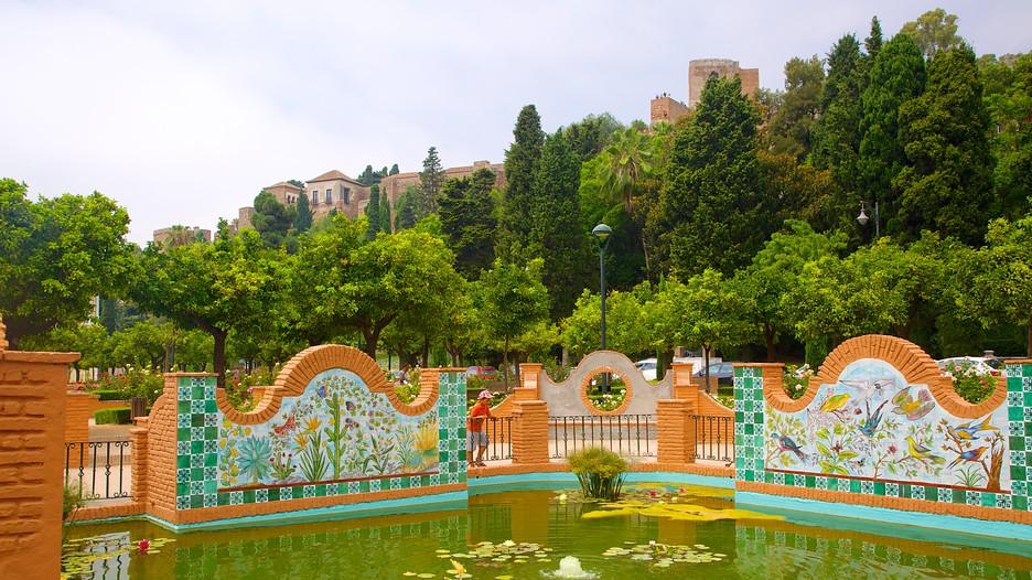 Uncios Malaga-49790